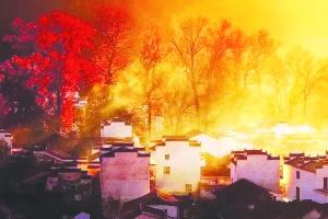 婺源红枫 温暖了初冬