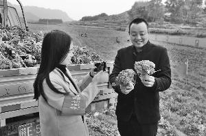 蔬菜获丰产 党员推介忙
