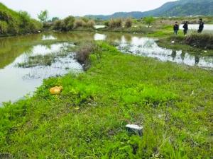 环保警察打响护鱼行动第一枪 拘留3名电毒鱼者