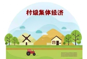 乡村产业振兴离不开壮大村级集体经济