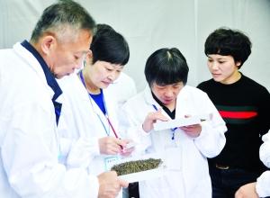铅山县第二届河红茶斗茶大赛在武夷山镇举行