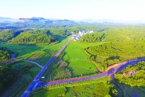 嬗变农村路 秀美新视线  ——改革开放四十年横峰县美丽农村路建设掠记