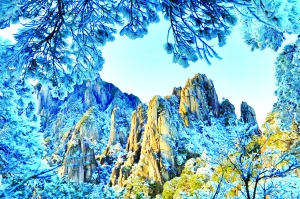 冬日山上好风景