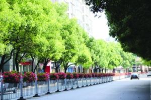 """多彩植物让饶城""""花街""""迷人"""