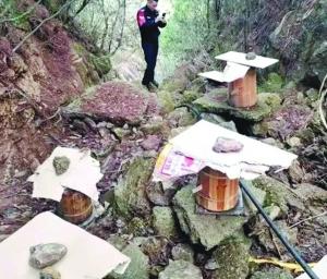 两小老板偷走老人五桶土蜂 民警循迹跨省抓获