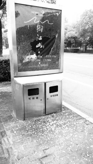 滨江东路垃圾桶灯箱玻璃被毁坏