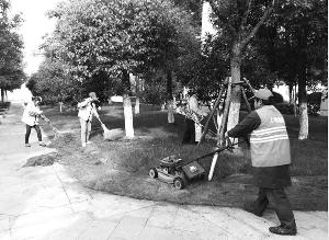 夏季花草树木生长旺  园林工人顶酷暑护绿